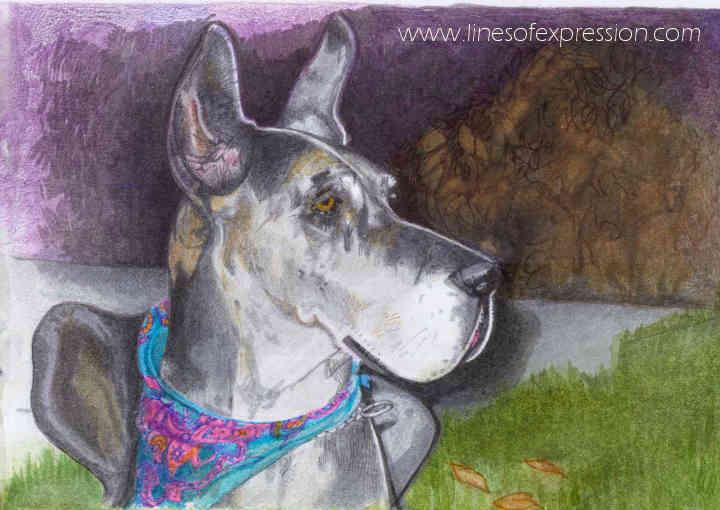 Rebecca Payne. Watercolor and colored pencil memorial pet portrait.